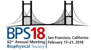 BPS2018 Logo